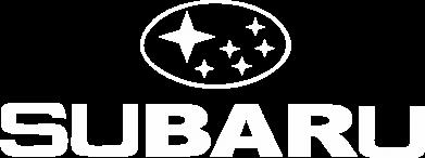 Принт Мужская толстовка на молнии Subaru - PrintSalon