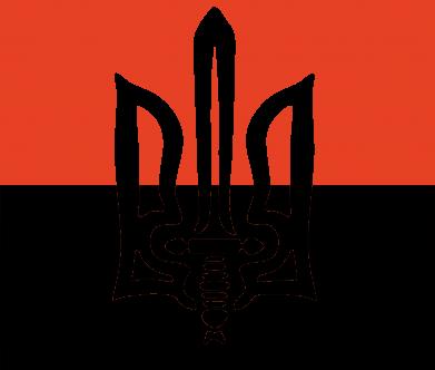 Принт Чашка-хамелеон Герб Правого Сектору, Фото № 1 - PrintSalon