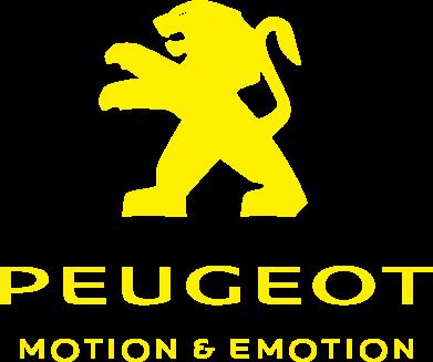 Принт Футболка з довгим рукавом PEUGEOT, Фото № 1 - PrintSalon
