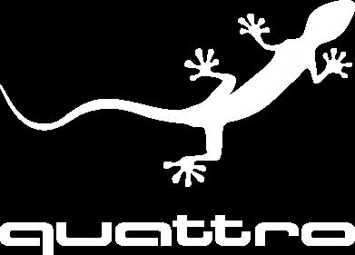 Принт Женская футболка с V-образным вырезом Quattro - PrintSalon