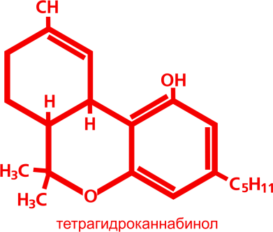 Принт Эко-сумка Тетрагидроканнабинол, Фото № 1 - PrintSalon